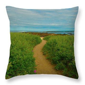 Path To Blue Throw Pillow