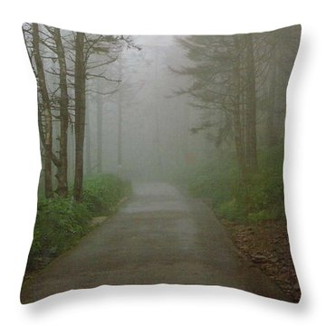 Path To Clingmans Dome Throw Pillow by Karin Thue