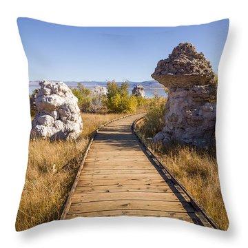 Path To Mono Lake Throw Pillow