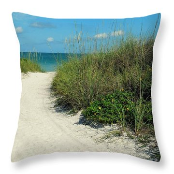 Path To Pass -a- Grille Throw Pillow by Valerie Reeves