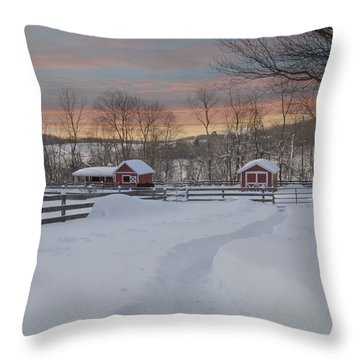 Path To The Barn Throw Pillow by Fran J Scott