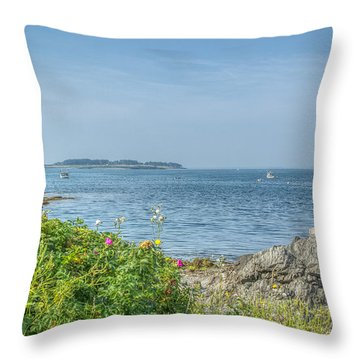 Throw Pillow featuring the photograph Path To The Cove by Jane Luxton