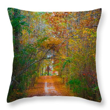 Path To The Fairies Throw Pillow