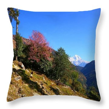 Path To The Mountains Throw Pillow by FireFlux Studios