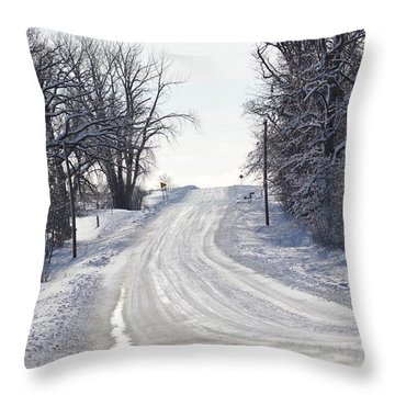 Throw Pillow featuring the photograph Path To The Unknown by Dacia Doroff