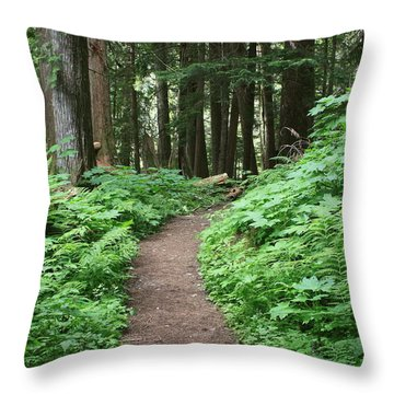 Throw Pillow featuring the photograph Path To Tranquility by Myrna Bradshaw