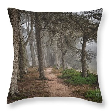 Pathway Throw Pillow by Alice Cahill