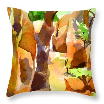 Pathway Through Elephant Rocks 1b Throw Pillow by Kip DeVore