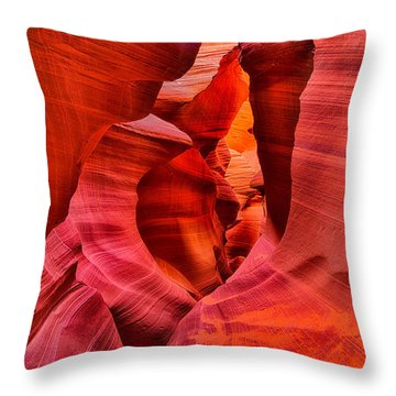 Pathway To Beauty Throw Pillow