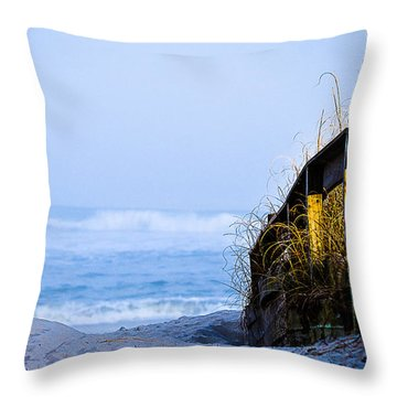 Pathway To Happiness Throw Pillow