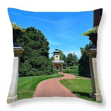 Pathway To The Observatory Throw Pillow by Luther Fine Art