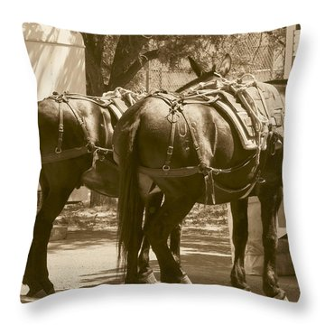 Patient Pack Mules Throw Pillow