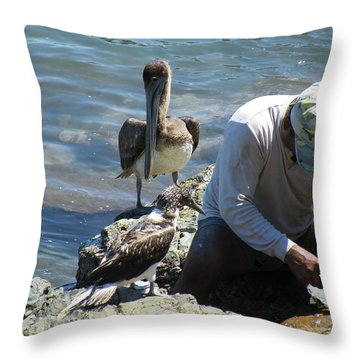 Throw Pillow featuring the photograph Patient Pelicano  by Brian Boyle