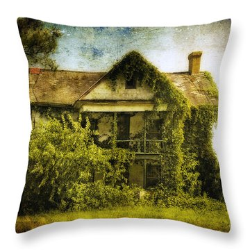 Patiently Waiting Throw Pillow by Lois Bryan