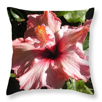Patio Pink Throw Pillow