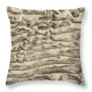 Throw Pillow featuring the photograph Patterns In Sand 3 by William Selander