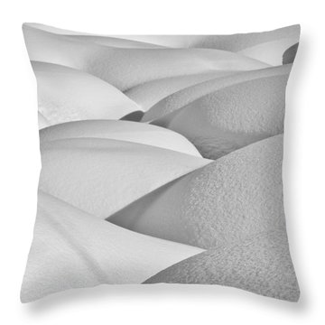 Patterns Of Shadow And Shape Created Throw Pillow by Ray Bulson