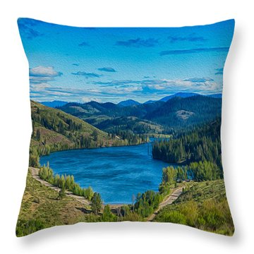 Patterson Lake In The Summer Throw Pillow
