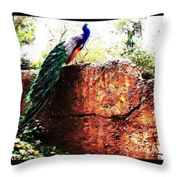 Throw Pillow featuring the photograph Pavoreal by Vanessa Palomino