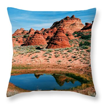 Paw Hole Reflections Throw Pillow by Mike  Dawson