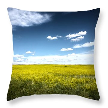 Pawnee Grasslands Throw Pillow