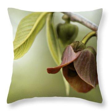 Pawpaw - Spring Delight Throw Pillow