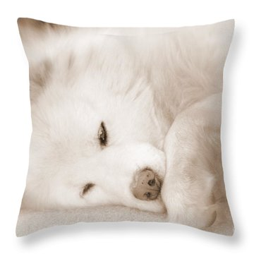 Pawsome Throw Pillow by Fiona Kennard