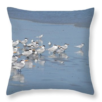 Pay Attention Throw Pillow by Ellen Meakin