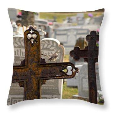 Paying Respect Throw Pillow by Debi Demetrion