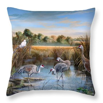 Paynes Prairie Preserve State Park- Day Of The Sand-hill Throw Pillow