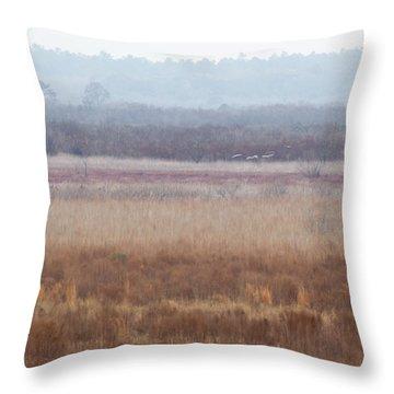 Throw Pillow featuring the photograph Paynes Prairie White Birds by Paul Rebmann