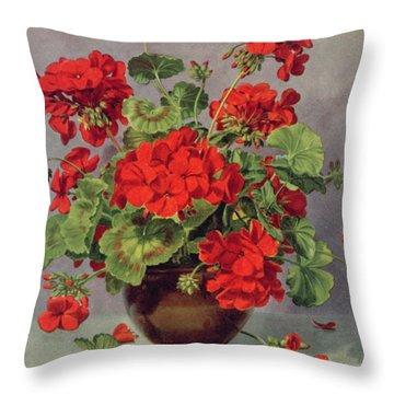 Geranium In An Earthenware Vase Throw Pillow
