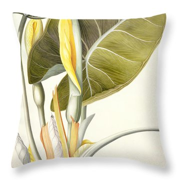 Arum Maximum Throw Pillow