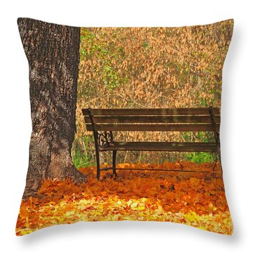 Throw Pillow featuring the photograph Peace And Quiet by Geraldine DeBoer