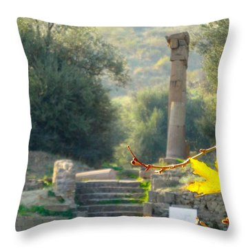 Throw Pillow featuring the photograph Peace At Asclepion by Alan Lakin