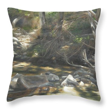 Peace At Darby Throw Pillow