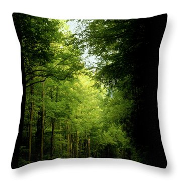 Peace Found Within Throw Pillow by Karen Wiles
