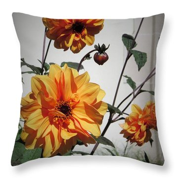 Throw Pillow featuring the photograph Peace In The Garden by Jeanette Oberholtzer