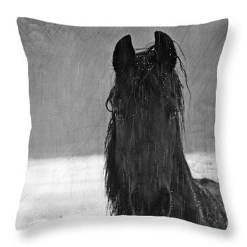 Peace In The Storm Throw Pillow by Michelle Twohig