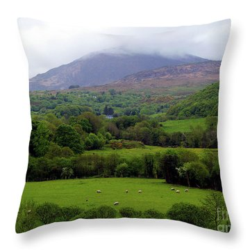 Peace On The Emerald Isle Throw Pillow by Patricia Griffin Brett