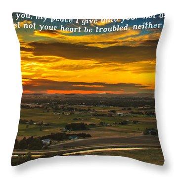Peace Throw Pillow by Robert Bales