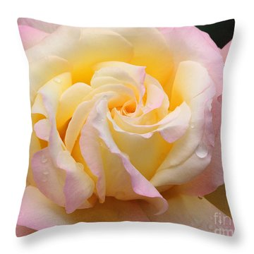 Peace Rose Throw Pillow by Olivia Hardwicke