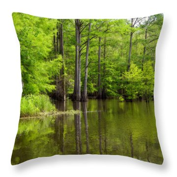 Peaceful Afternoon Throw Pillow by Ester  Rogers