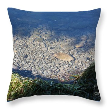 Peaceful Bay Throw Pillow