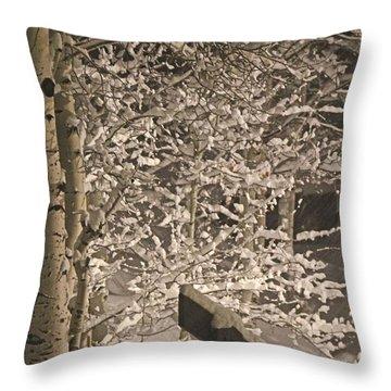 Peaceful Blizzard Throw Pillow by Fiona Kennard
