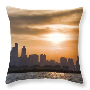 Peaceful Chicago Throw Pillow by John Hansen