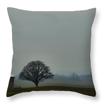 Peaceful Country Morning Throw Pillow by Don Schwartz
