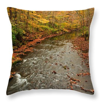 Peaceful Fall Throw Pillow