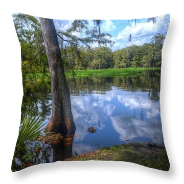 Peaceful Florida Throw Pillow by Timothy Lowry