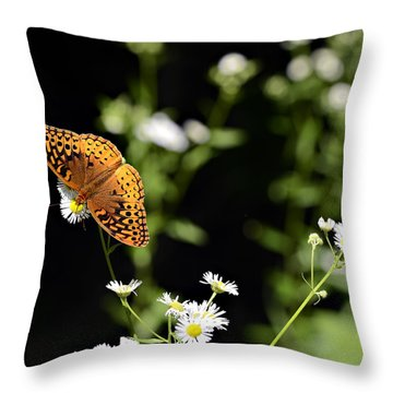 Peaceful Forest Throw Pillow by Susan Leggett